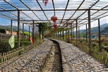 Yun Shui Yao, Fujian