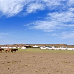Gobi Desert May 2016
