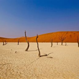 Sossusvlei, Namibia Sep 2017
