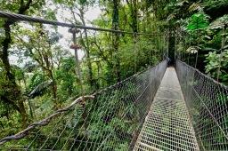 Arenal Hanging Bridges Park Feb 2019